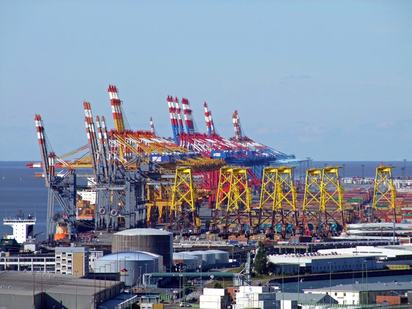 Container gantry cranes in a port area.