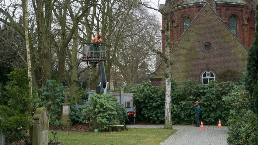 Mitarbeiter des Gartenbauamtes bei der Baumkontrolle mit Hubsteiger
