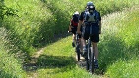 Two cyclists ride with luggage through a green landscape.