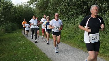 Runners run through a forest area.