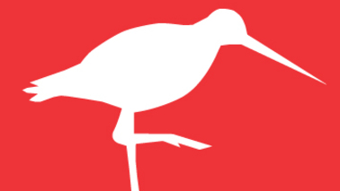 White bird on a red background.